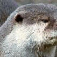 OtterMan